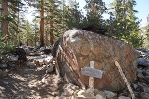 Trail junction (head towards Bishop Pass)