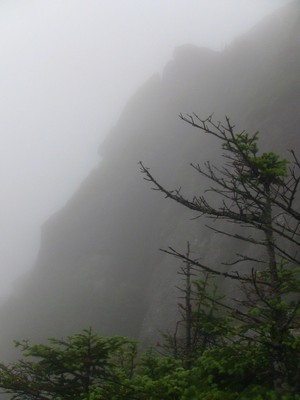 Cliff wall shrouded in fog